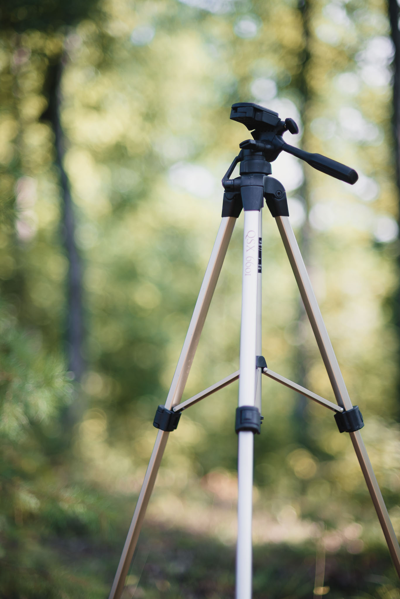 tripod used for milky way photos