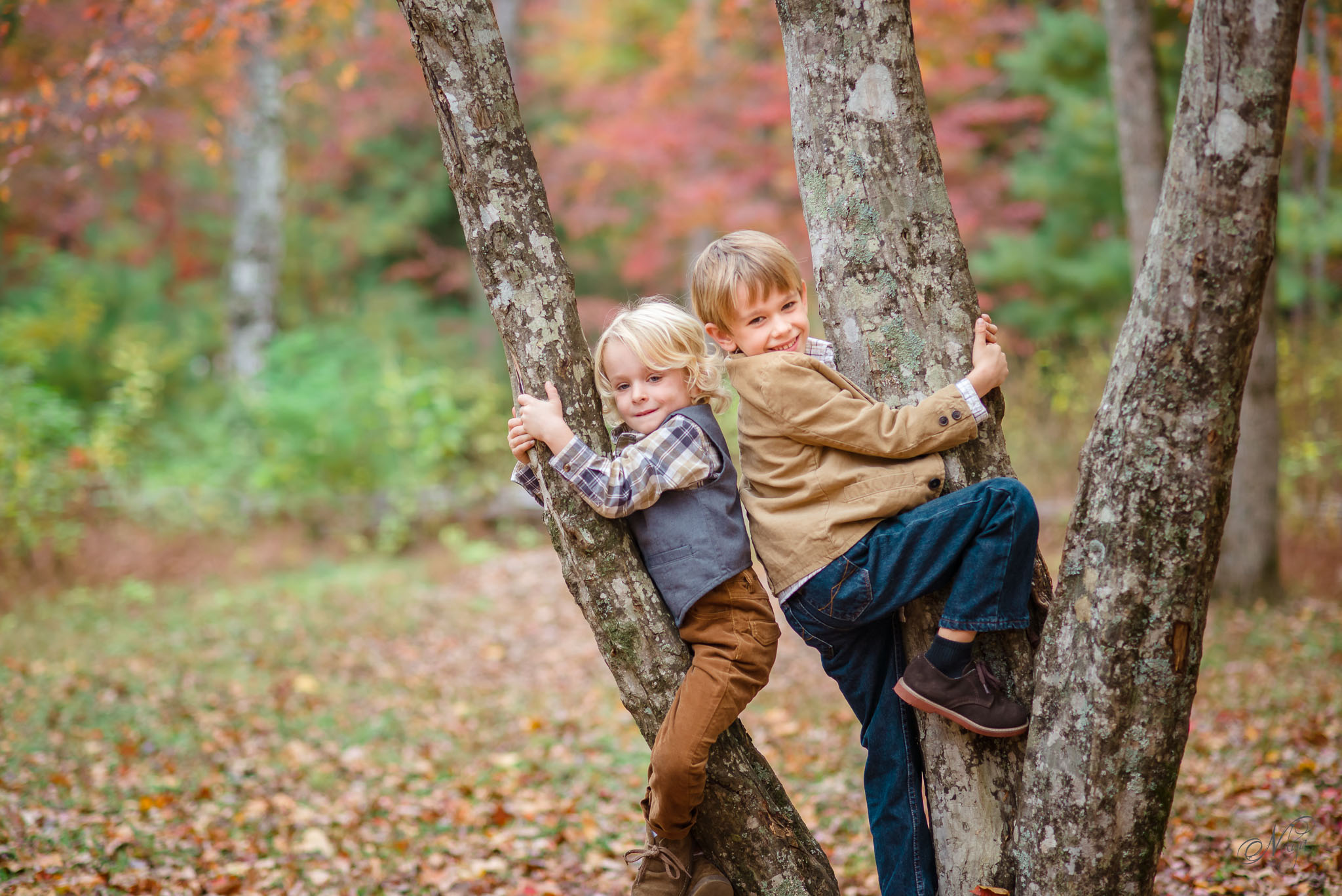 Smoky mountain fall family photos-13