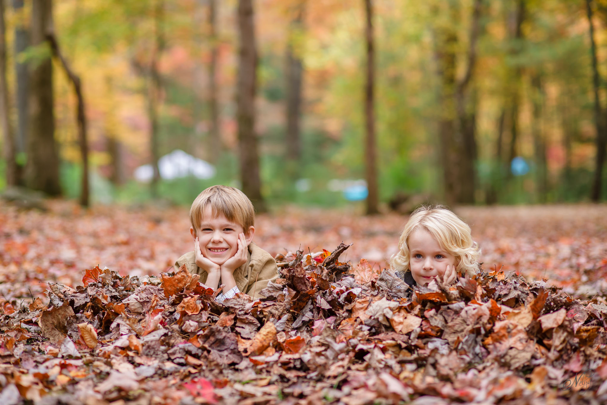 Smoky mountain fall family photos-14
