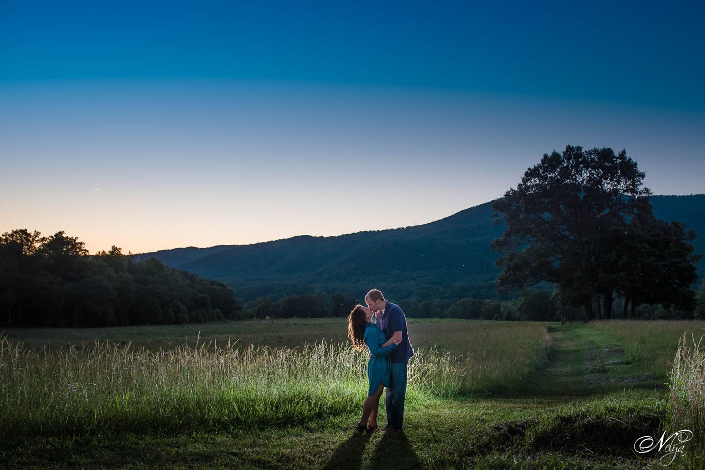 cades cove spring engagement-nighttime