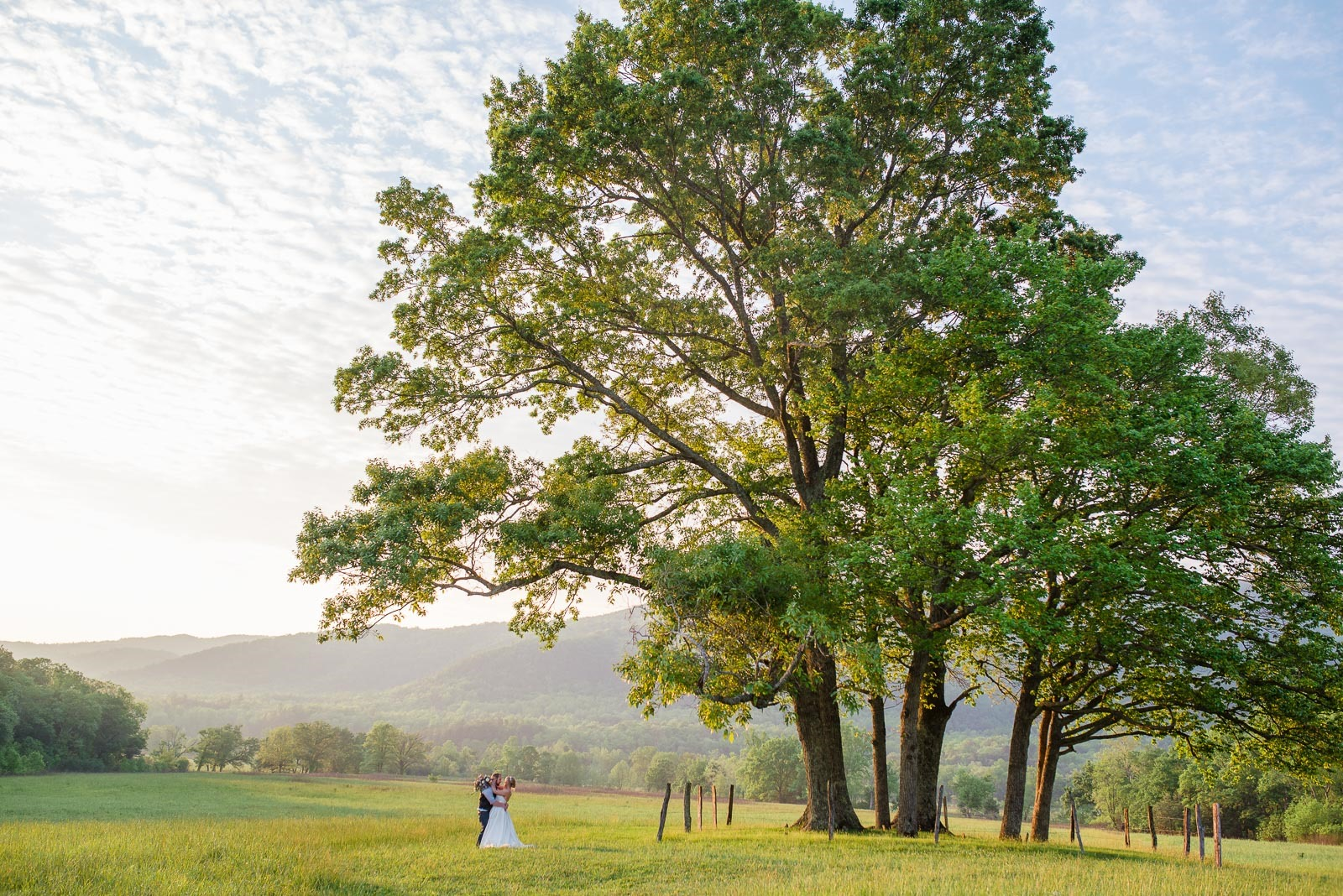cades cove wedding-9231