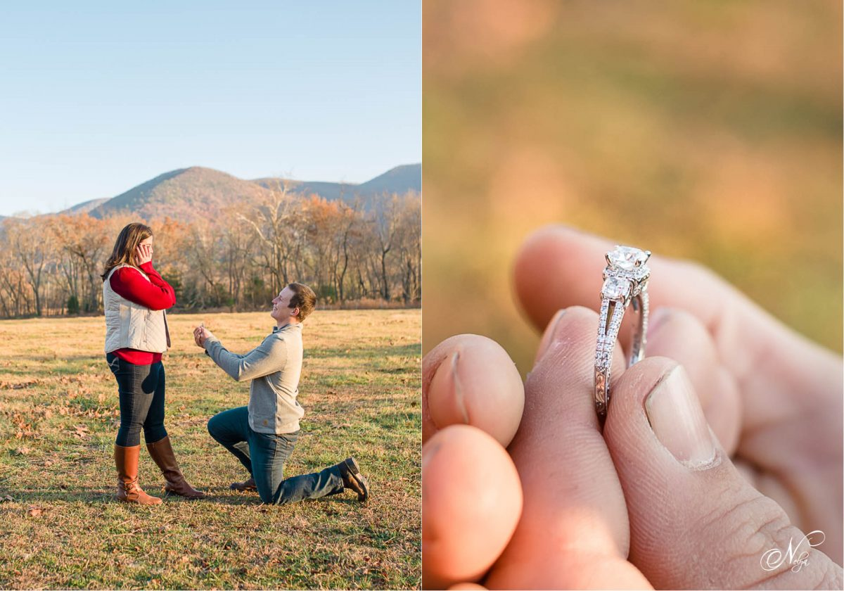 proposal at Cades Cove at Thanksgiving
