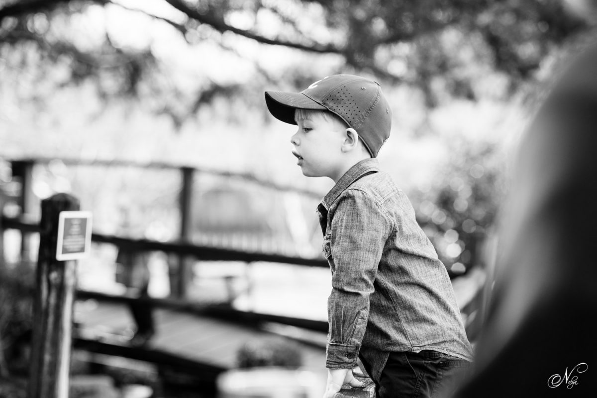Boy watching trains at Huntsville botanical gardens