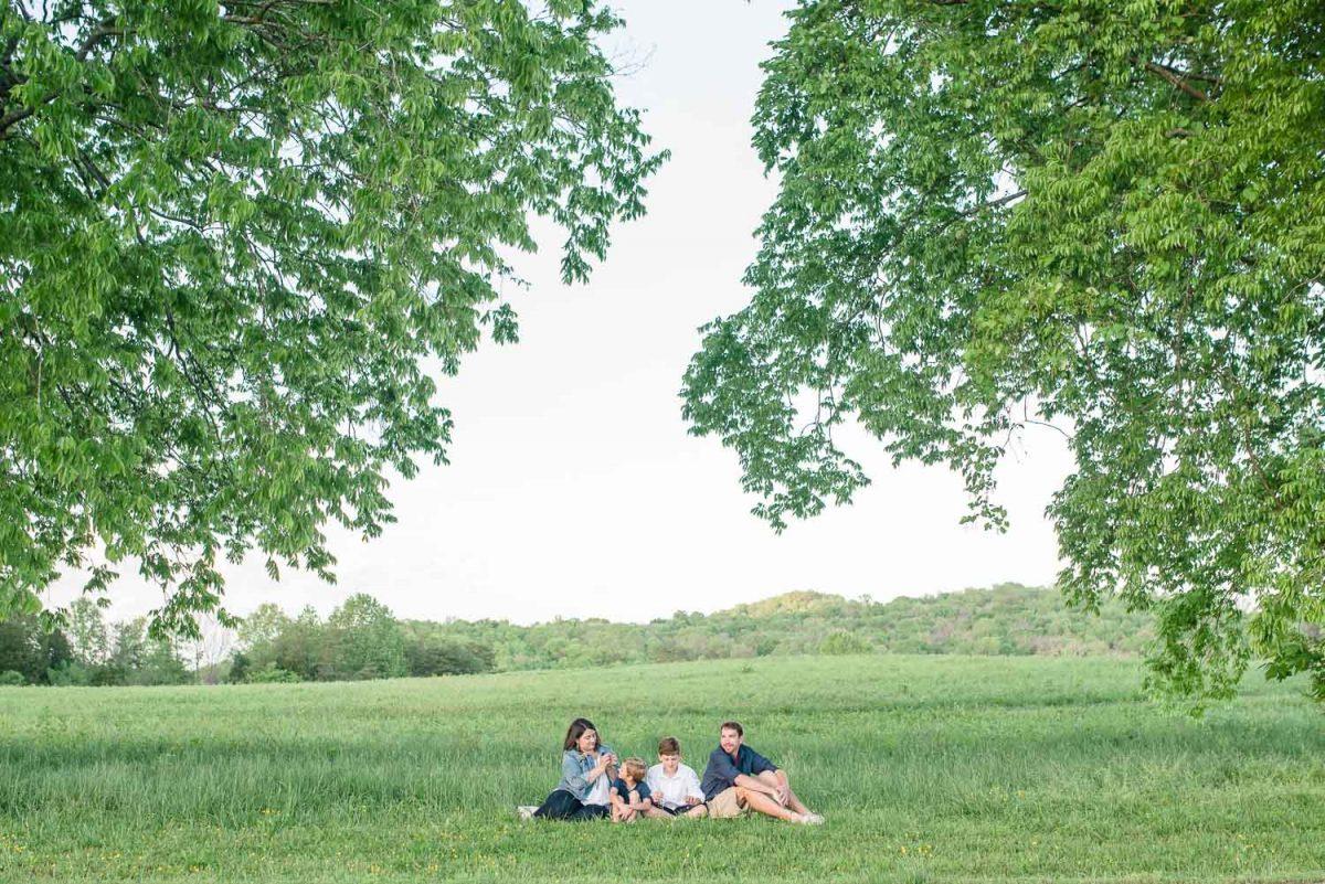 Family photos under tall trees