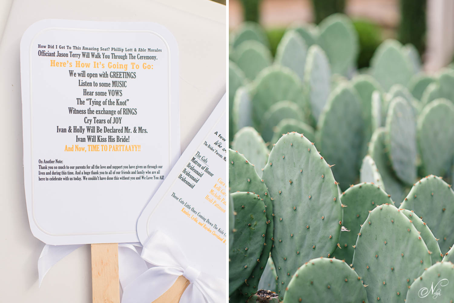 wedding program fans and cactus plants