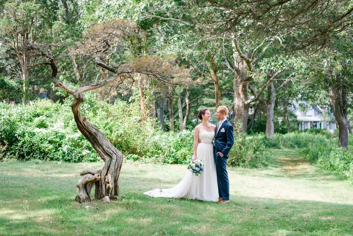 bonsai tree and bride and groom portraits