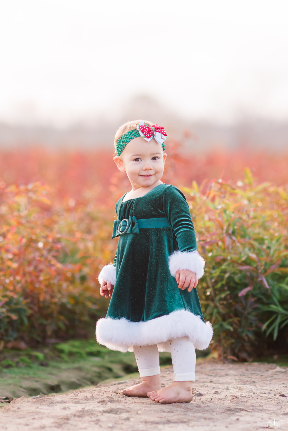 18 month old in green velvet dress and Christmas headband