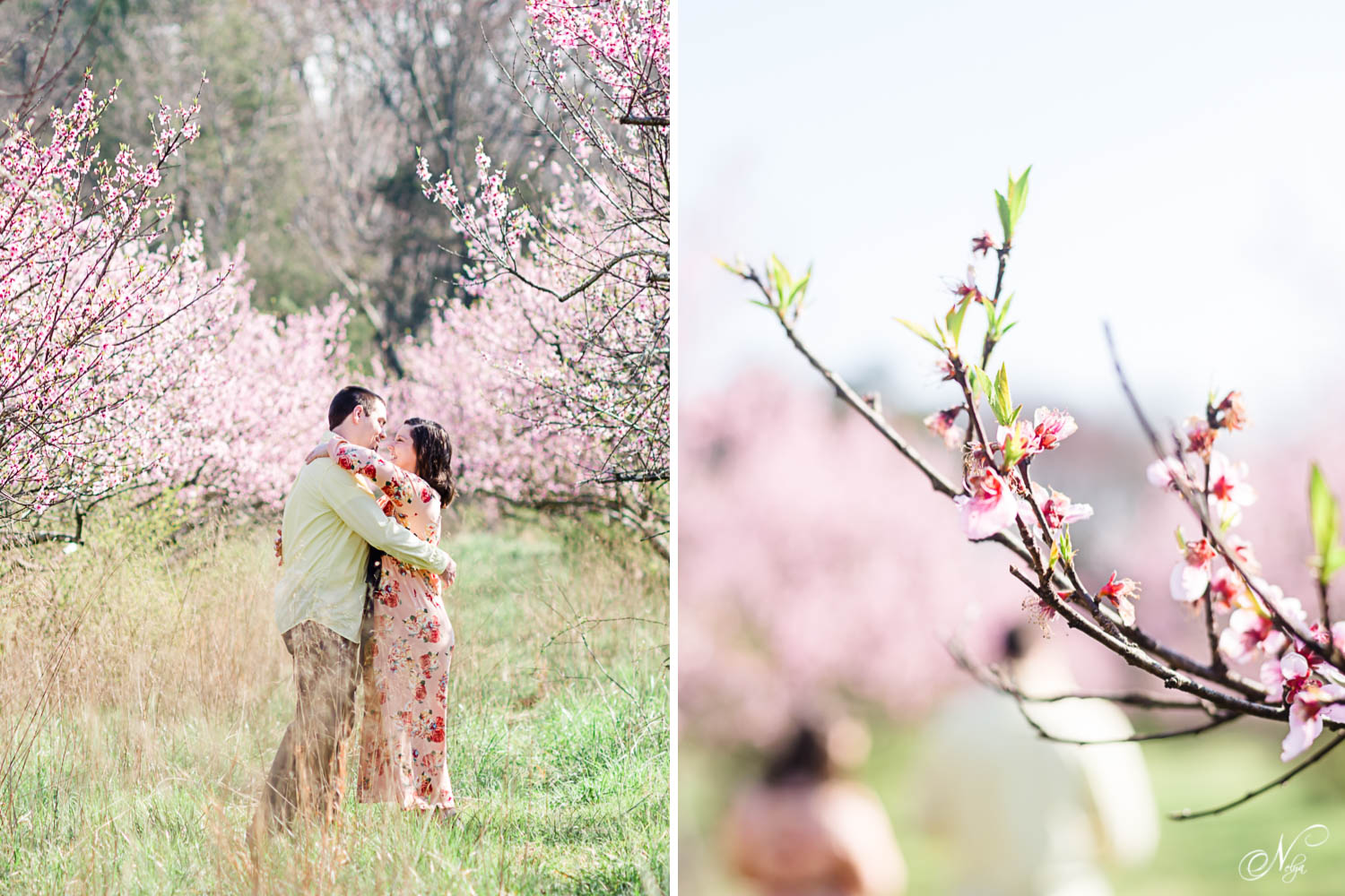 girl wearing pink floral wrap dress and guy in yellow shirt and gray pants. and close up photo of peach blossoms