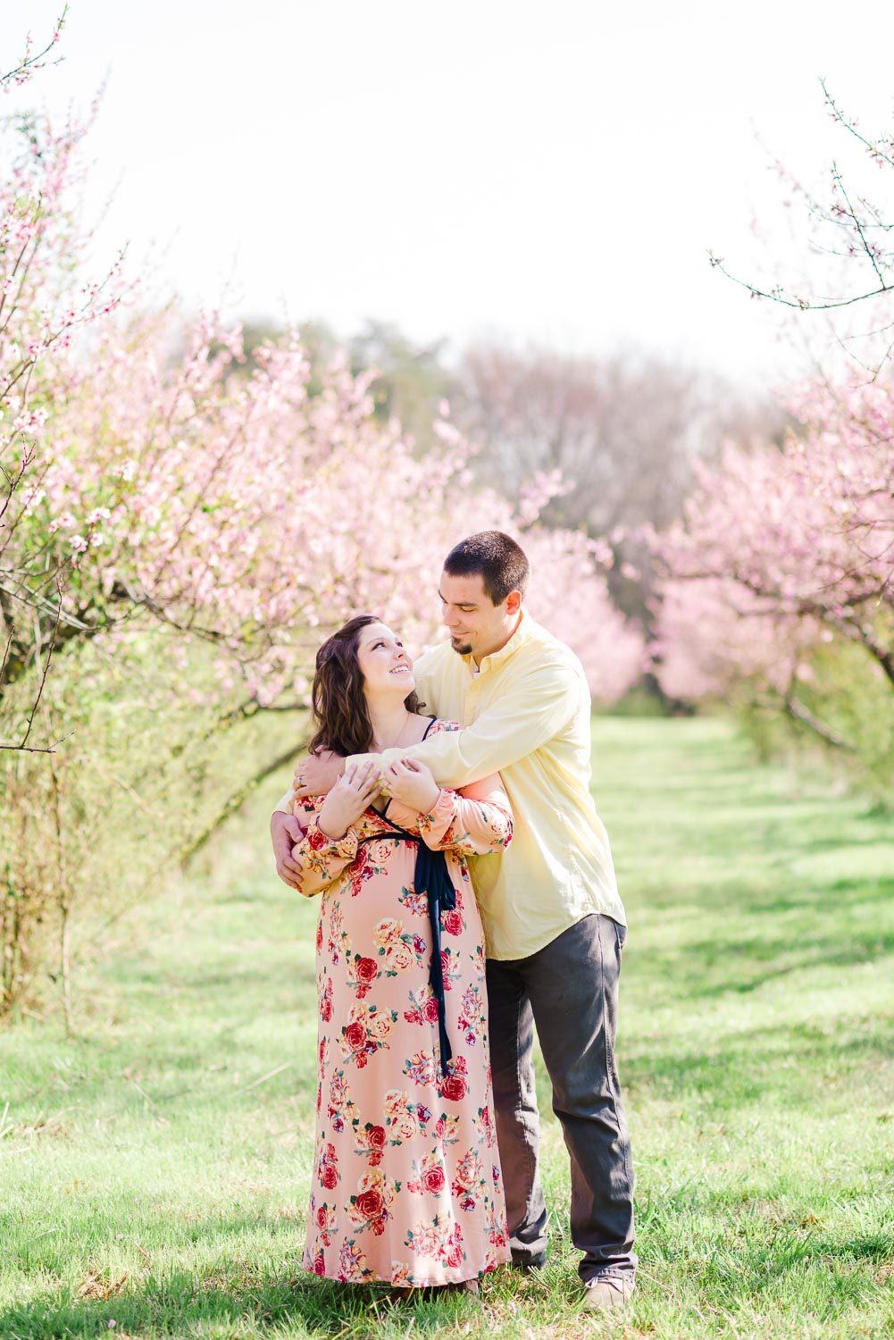 newlyweds out in pink flowering peach orchard behind the Barn at Drewia hill near Dayton TN