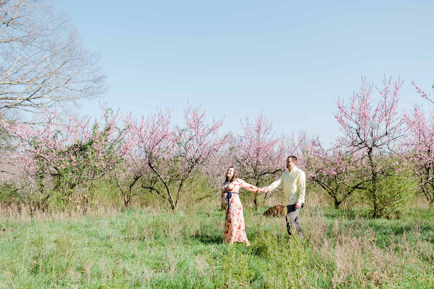 two people just walking through the peach orchaed at the barn at Drewia Hill wedding venue on Sale Creek TN