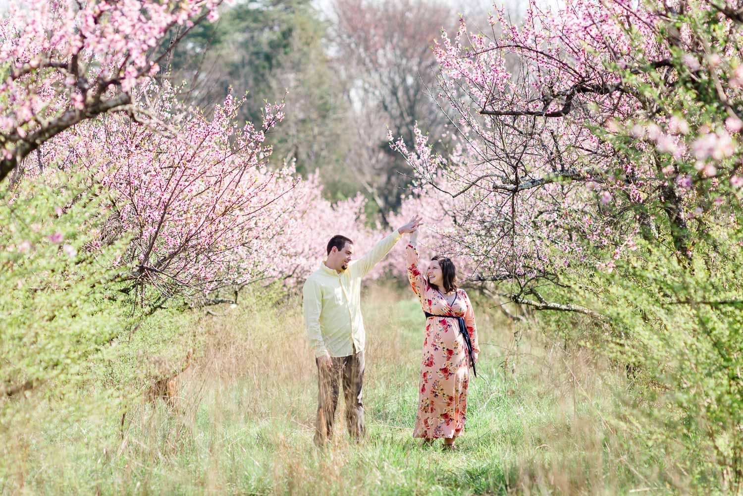 couple dancing outside in the peach orchard in the springtime in Tennessee.