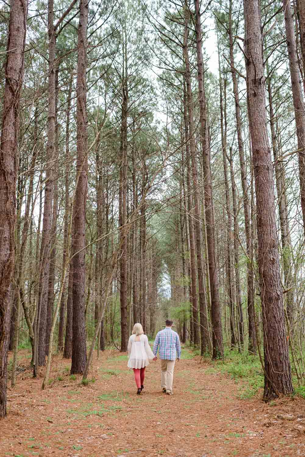 two people outside walking off in the distance through tall pine trees into the