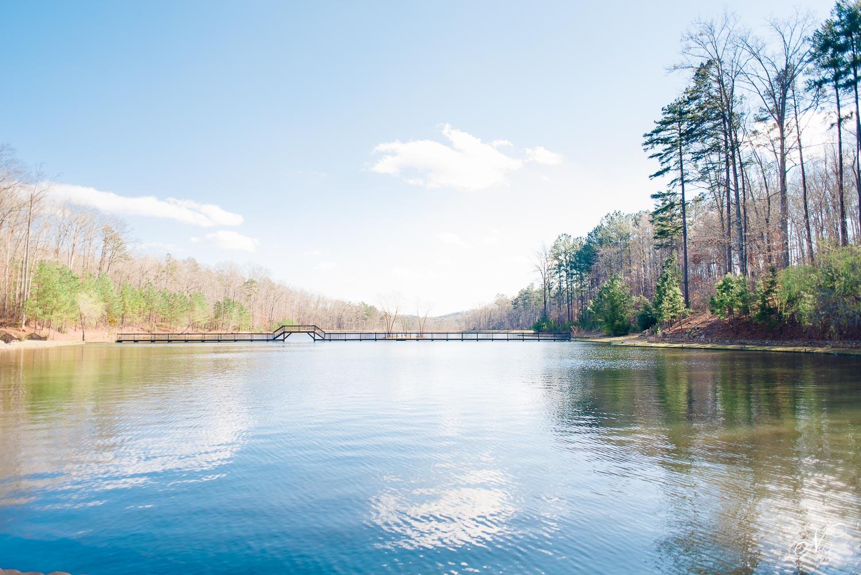 Lake view at Indigo Falls in Dallas Georgia in March