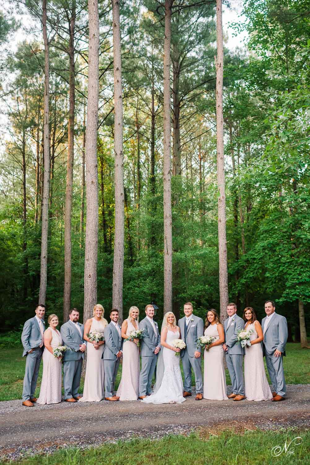 wedding party in front of tall pines at woody wedding venue in east tennessee