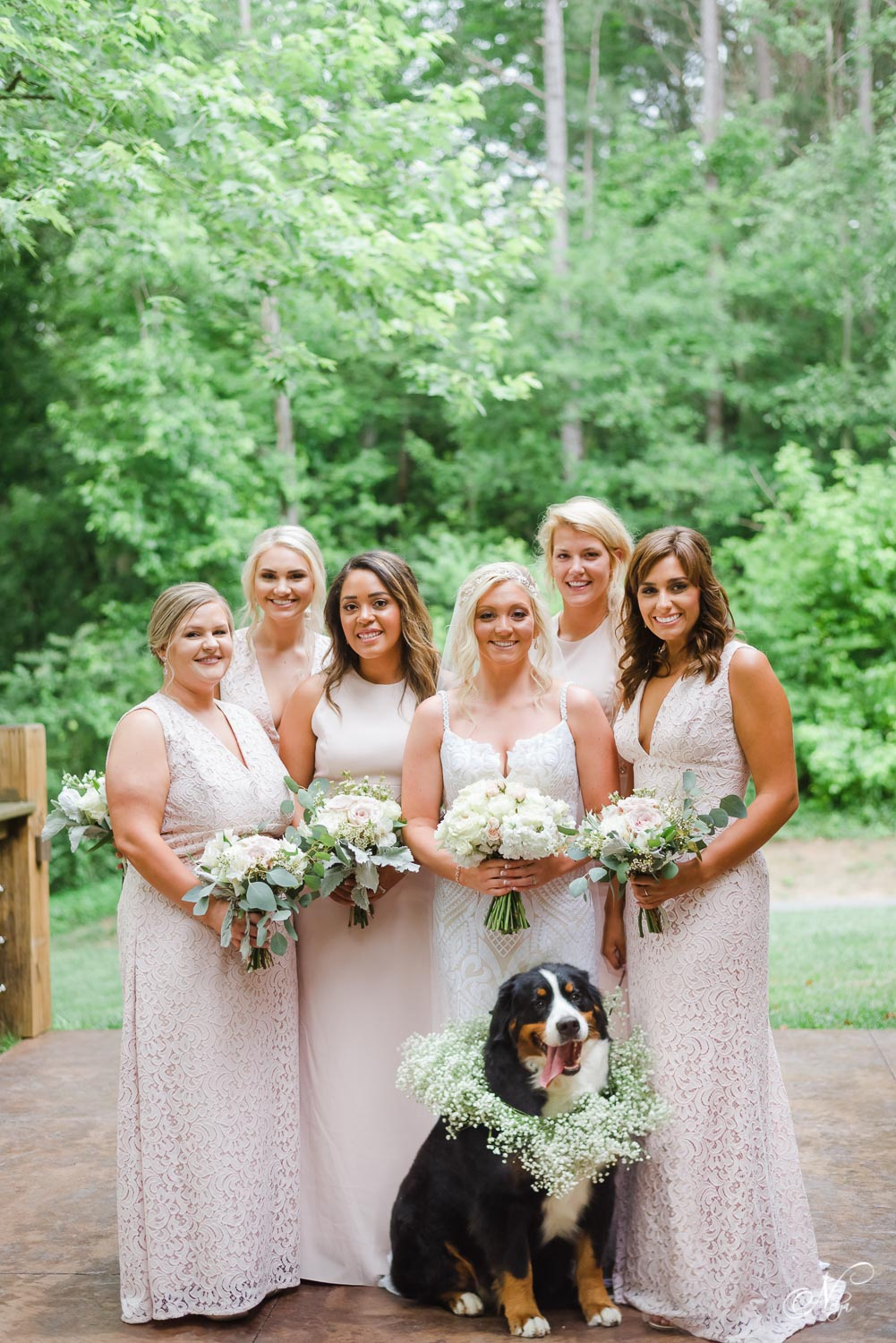 bridesmaids holding white flowers and Bernese mountain dog with baby's breath wreath around her neck at wedding venue near Cleveland TN
