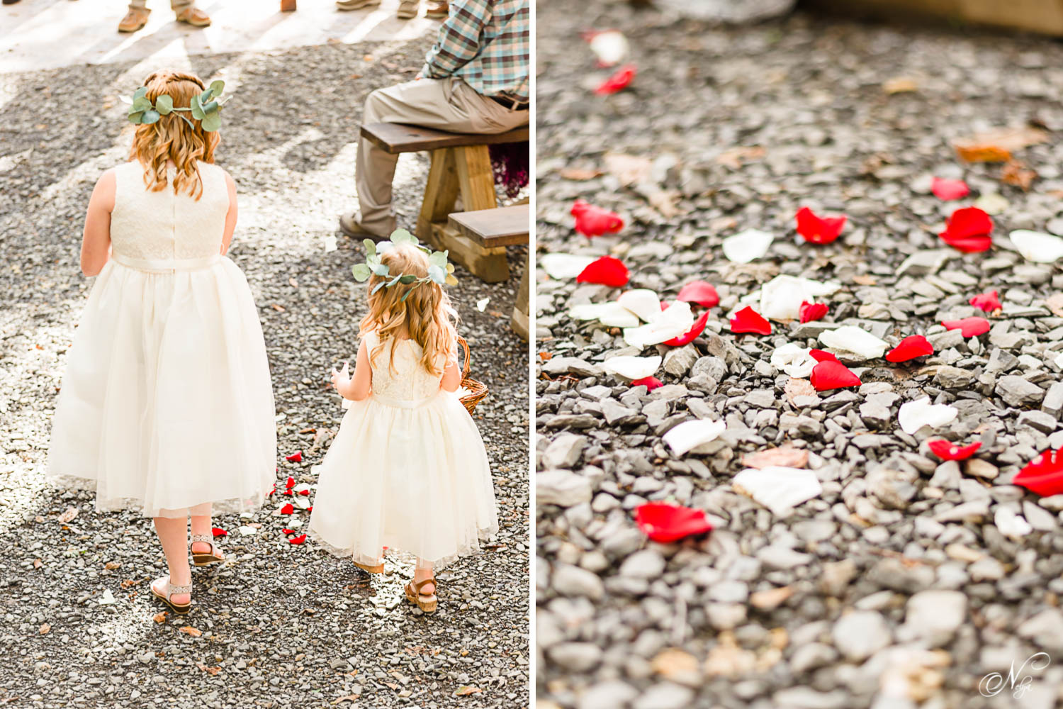 flower girls in cream colored dresses tossing rose petals. And individual rose petals fallen on the gray crushed rock walkway.