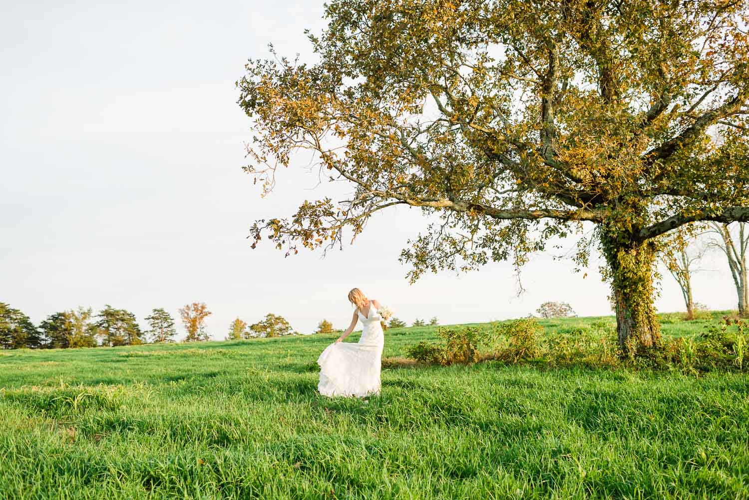 Bride under large tree wearing a wedding dress from MRS bridal in Chattanooga