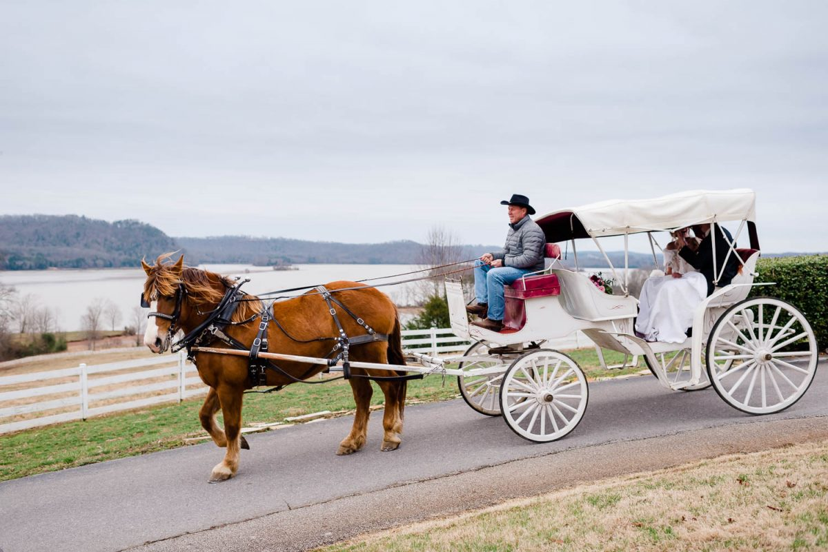 once horse and white carriage with the tennessee river in the background
