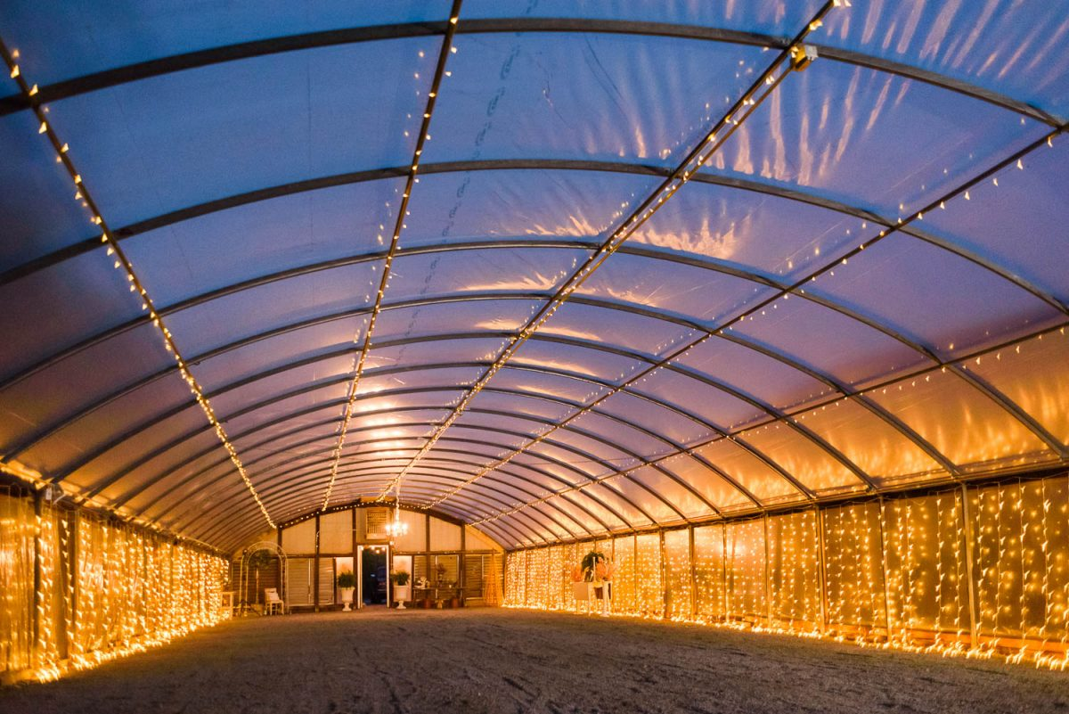 greenhouse at night with a million little string lights