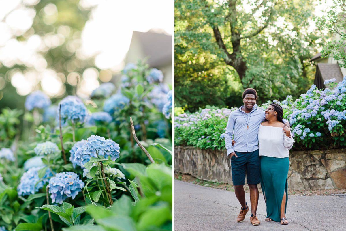 blue hydrangeas. and a couple walking down a street
