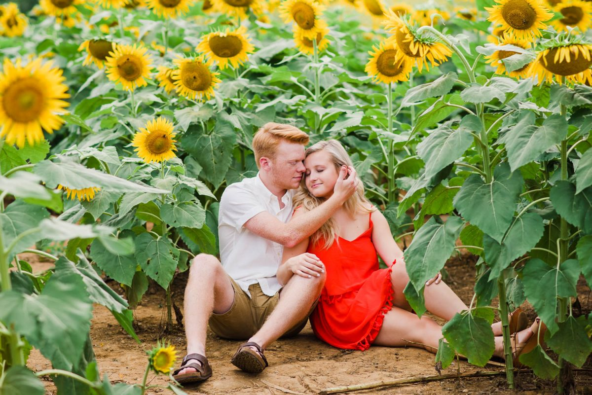two people sitting in Sunflower field near Chattanooga TN