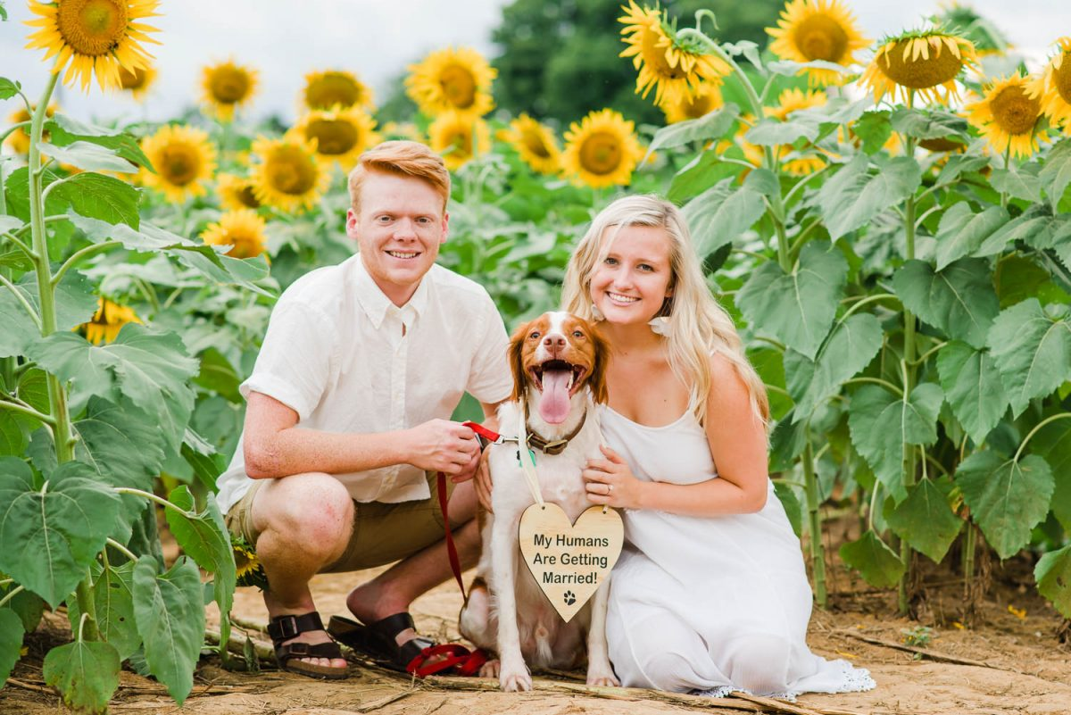 two people with dog with a heart shaped sign announcing wedding