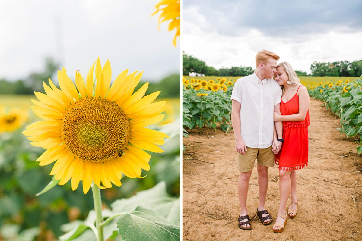 big yellow sunflower. And two people wearing white and red