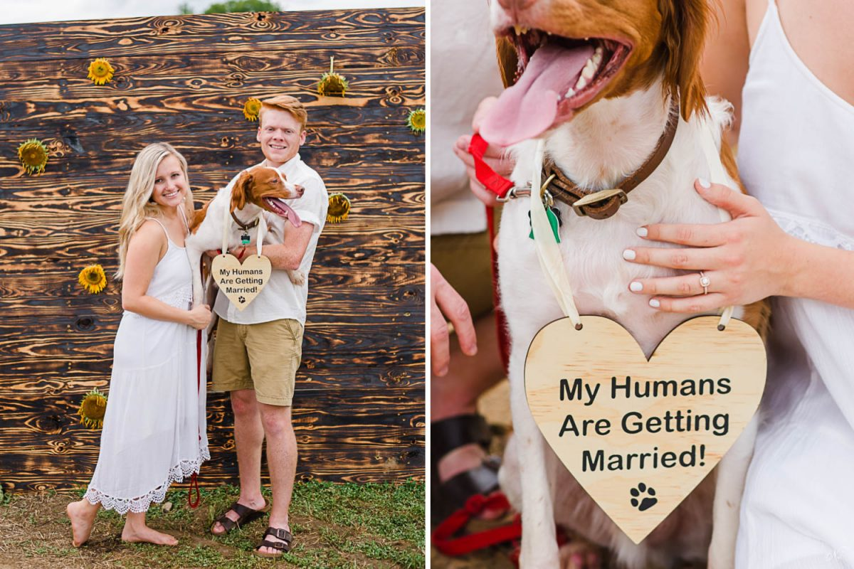 two people with dog and sign announcing their wedding that says My Humans are getting married.