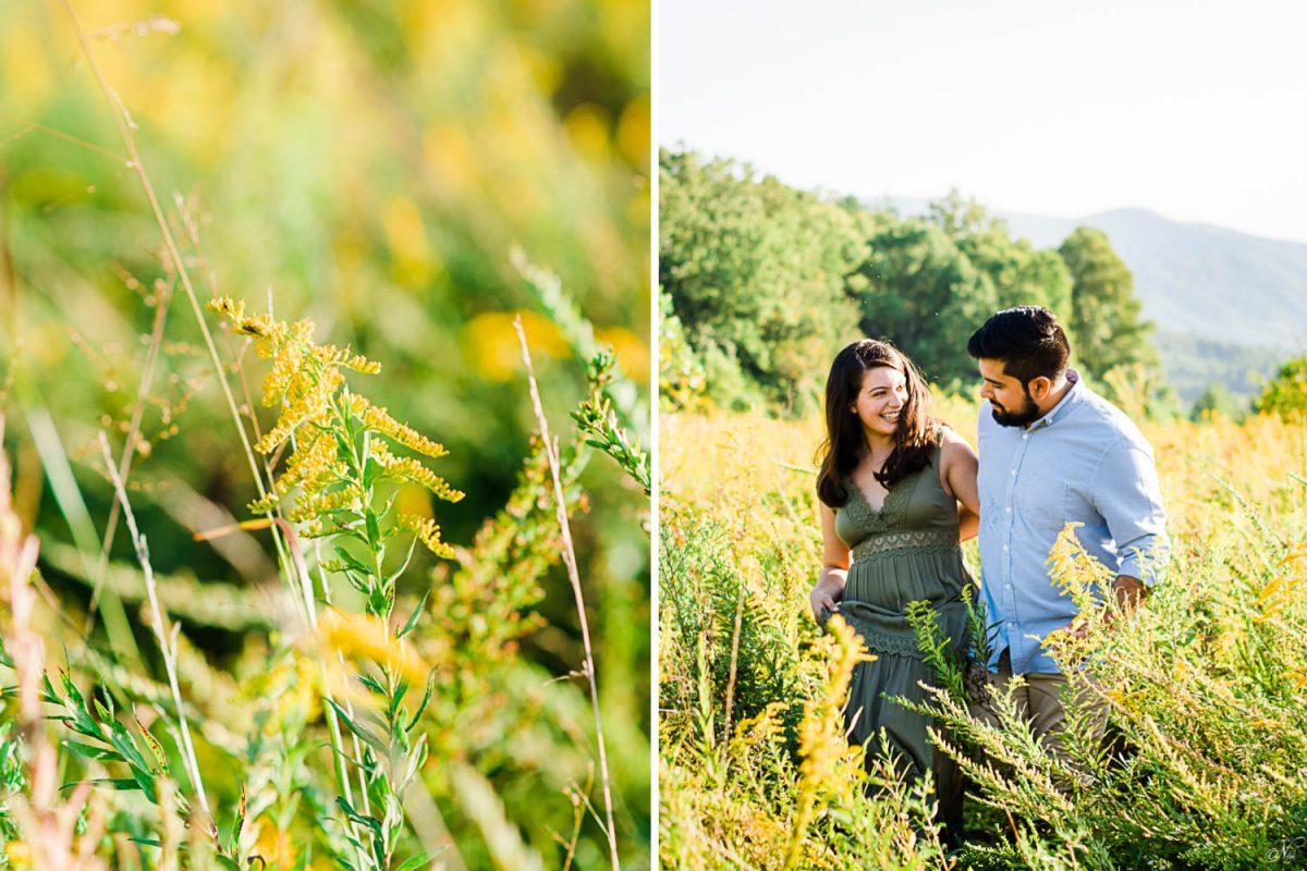 golden rod in a field and two people walking in a field
