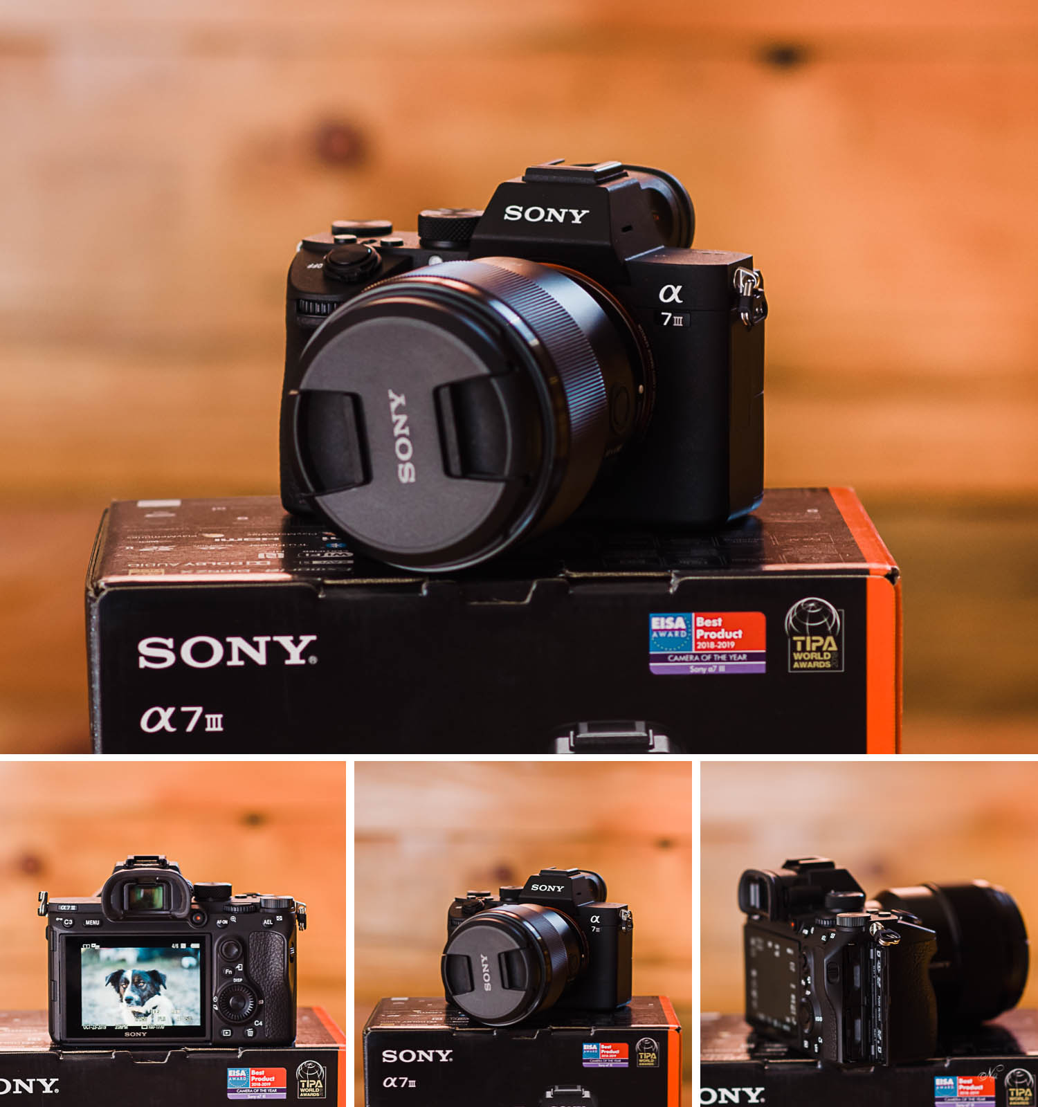 switching from Nikon to Sony A7iii.
