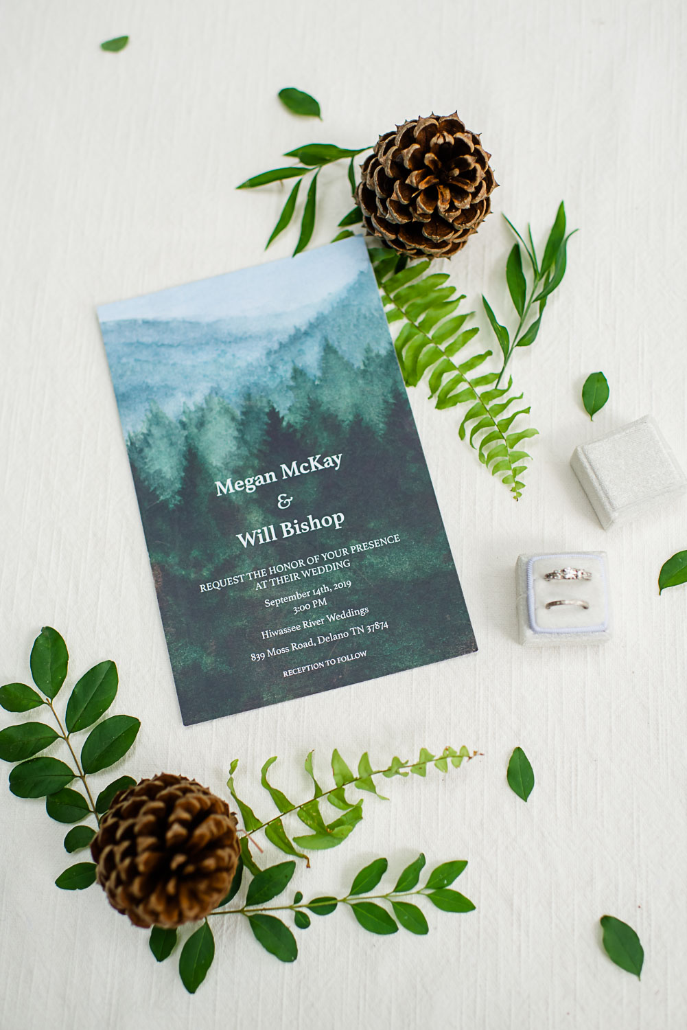 invitations with pine cones and frens