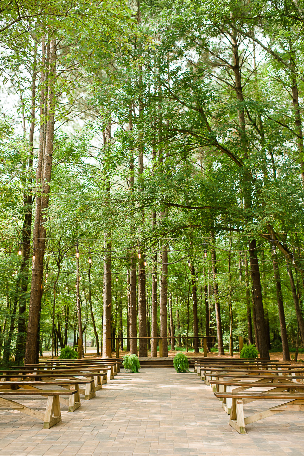 forest wedding ceremony site