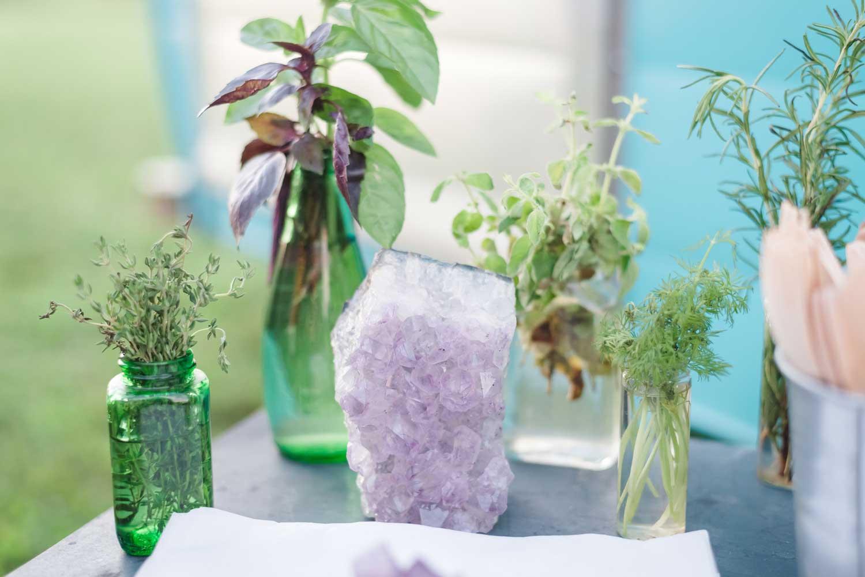 herbs in vaises